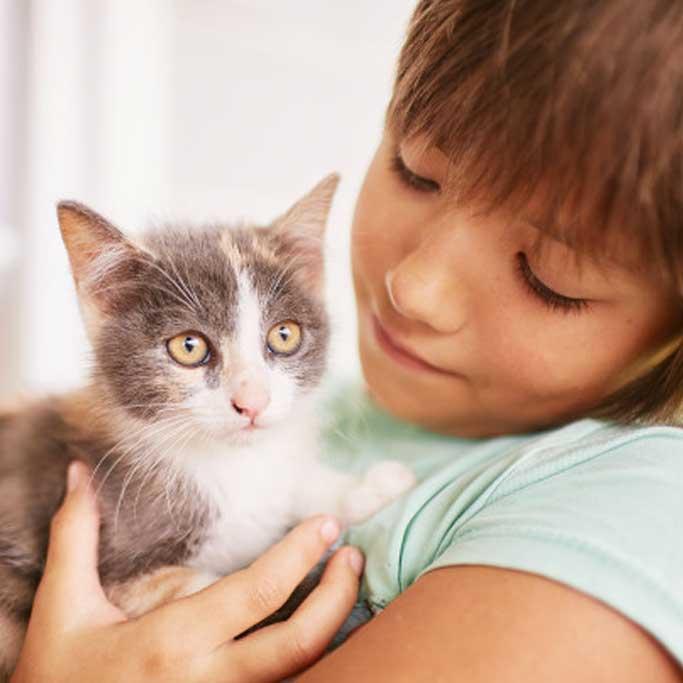 Criança com gato